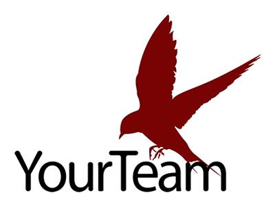 Logo YourTeam